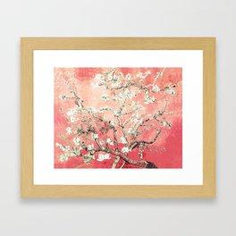 Van Gogh Almond Blossoms : Peach Framed Art Print