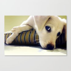 Our Stella Canvas Print