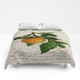 Shabby French botanical print tangerine clementine mandarin orange Comforters