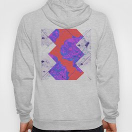 Abstract Geometric Peonies Flowers Design Hoody