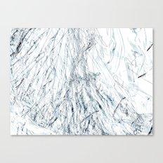 Cellophane Canvas Print