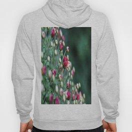 Flower Buds Hoody