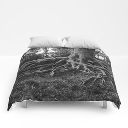 Putting Down Roots Comforters