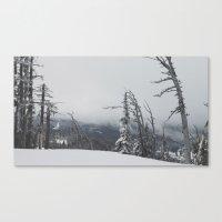 Where The Trees Die Canvas Print