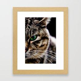 ml Framed Art Print