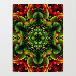 Peppy pepper mandala - green center Poster