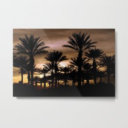 suprise sunset Metal Print