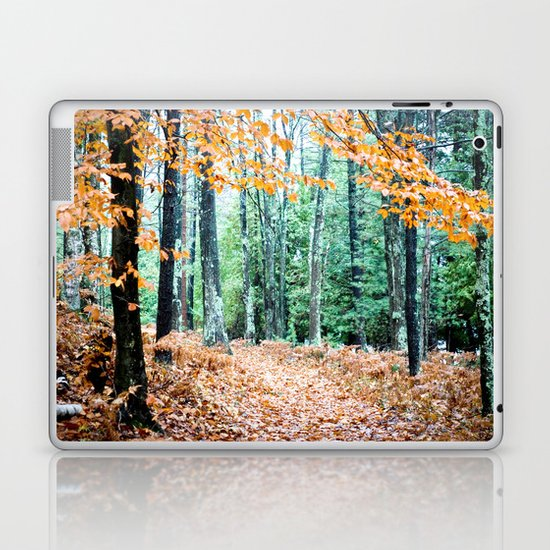 Once Upon a Time 2 Laptop & iPad Skin