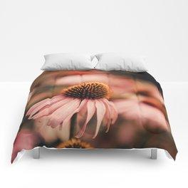 echinacea flowers Comforters