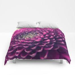 Purple Germini Closeup 1 Comforters