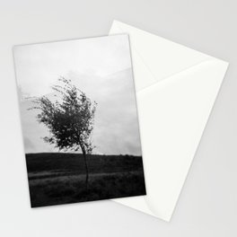 Dartmoor Tree Stationery Cards