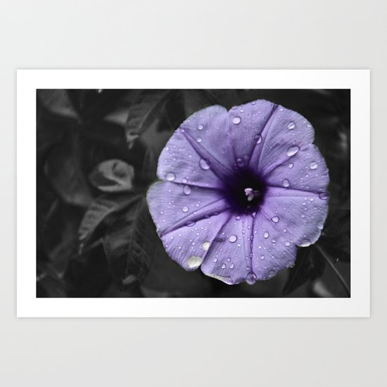 Color my Garden Purple Art Print