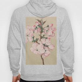 Ariaki - Daybreak Cherry Blossoms Hoody