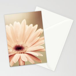 Peach Daisy Flower Photography, Brown Nature Floral Botanical Photo Stationery Cards