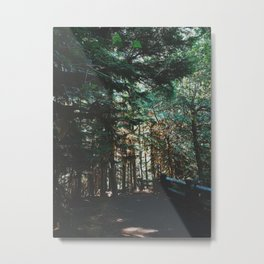 Dreamy Pacific Northwest Forest Metal Print