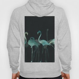 Cold Flamingos in the Night Hoody