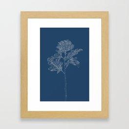 Chrysanthemum Blueprint Framed Art Print