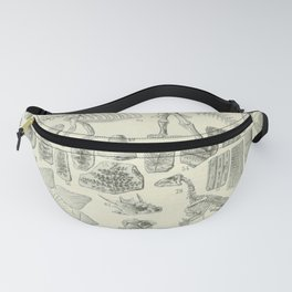 Fossil Chart Fanny Pack