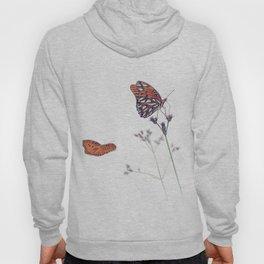 Gulf Fritillary butterflies in a meadow on white background Hoody