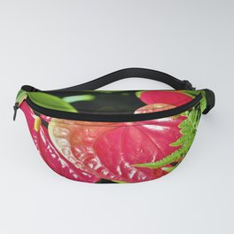 Red Anthurium Tropical Valentine by Reay of Light Fanny Pack