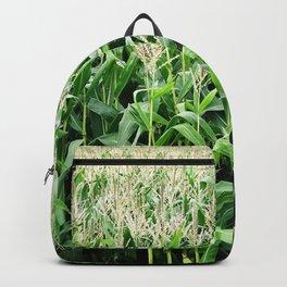 Corn -  Maize -  Crop -  Grow -  Agriculture -  Grain -  Food - Vintage illustration. Retro décor. Backpack