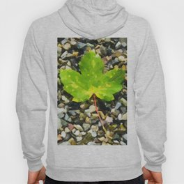 Green maple leaves Hoody