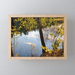 Warm sunlight on the trees. Framed Mini Art Print