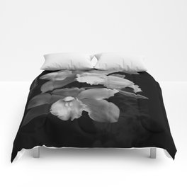 Midnight Gold - BW Comforters