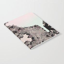KALEIDO KOLOR SPLASH  Notebook