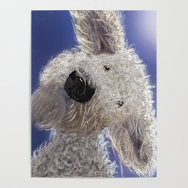 The Last Thing A Rabbit See Before It Dies From Laughter. Poster