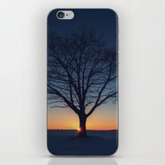 Winter Sundown iPhone & iPod Skin