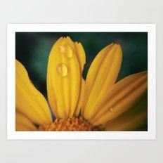 Yellow Water Art Print