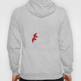 Card with red bow Hoody