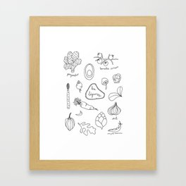 Les légumes Framed Art Print