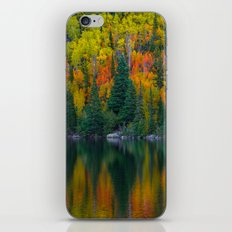 Reflections of Autumn iPhone & iPod Skin