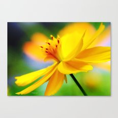 A Bright Sunny Day for Flowers Canvas Print
