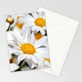Daisy Flowers 0136 Stationery Cards