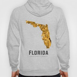 Florida - State Map Art - Abstract Map - Brown Hoody