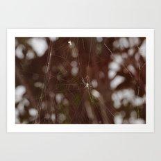 Forest weaving Art Print