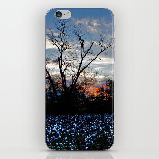 Another Early Morning in the Cotton Field iPhone & iPod Skin