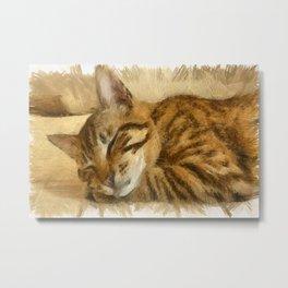 Let Sleeping Cats Lie Metal Print