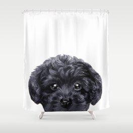 Black toy poodle Dog illustration original painting print Shower Curtain
