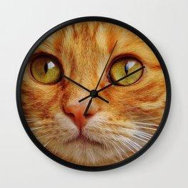 Orange Cat Face Wall Clock