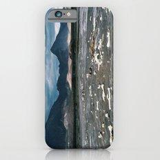 Bone Flats iPhone 6s Slim Case