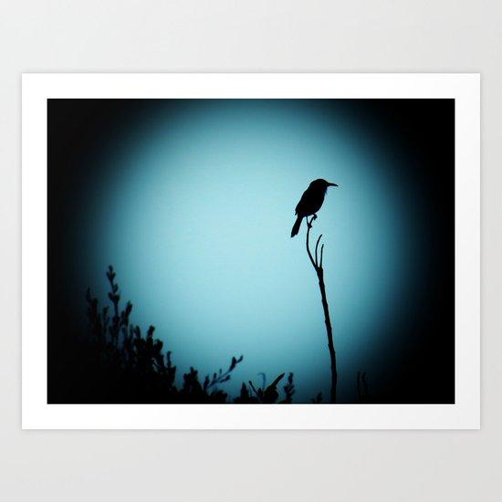 Perched Shadow Art Print