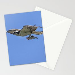 Mother Osprey Flying with Fish Stationery Cards
