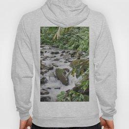 Smaller stream - Caimitillo river in upper El Yunque rainforest PR Hoody