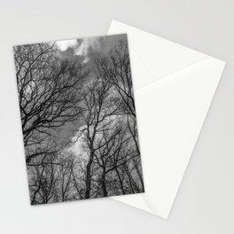 Cloudy day in the woods, black and white Stationery Cards