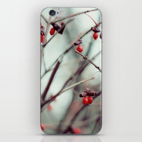 December Dream iPhone & iPod Skin