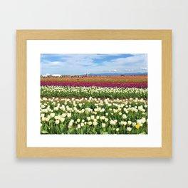 Woodburn Tulips Framed Art Print